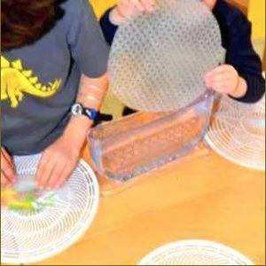 Rolling Fun - Rice Paper Roll Maker Set